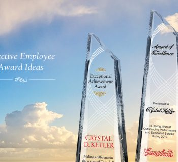 Effective Employee Award Ideas – Award Categories, Criteria and Names