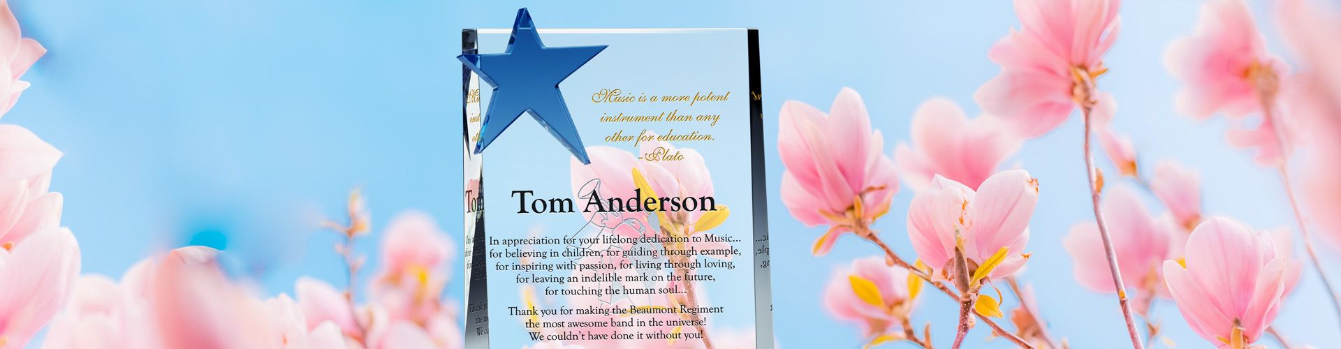 Appreciation Plaques With Sample Wordings | Diy Awards