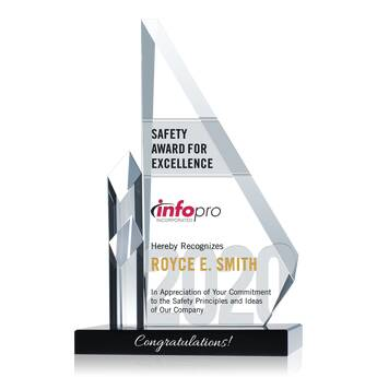 Safety Excellence Award (#014-2)