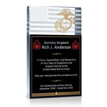 Marine Service Recognition Award  (#294-1)