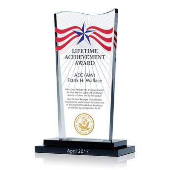 USN Lifetime Achievement Award (#332-2)