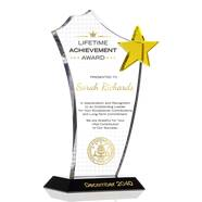 Gold Star Lifetime Achievement Award Plaque