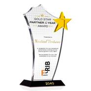 Gold Star Top Distributor Award Plaque