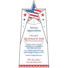 Air Force Service Appreciation Award (#42-3)