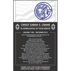 Chief Master Sergeant Appreciation Plaque (#291-5)