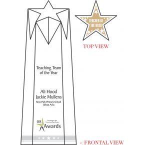 Star Teaching Team Award (#045-1)