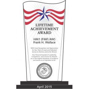 USMC Lifetime Achievement Award (#313-2)