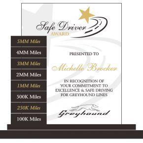 Safe Driver Milestone Award (#504-3)