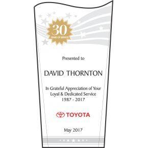 Wave Staff 30 Years Service Award (#352-1)