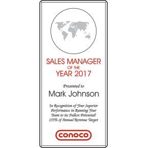 Sales Manager of the Year Award (#027-2)