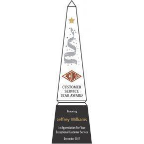 Customer Service Star Award Sample (#073-2)